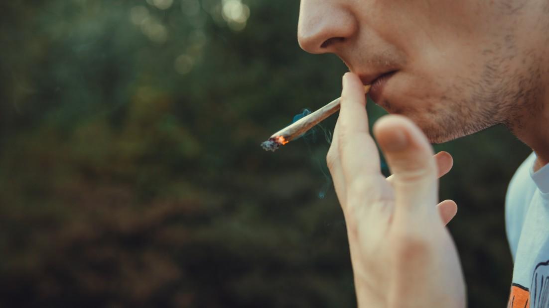 Prévention cannabis et drogues au volant en entreprise